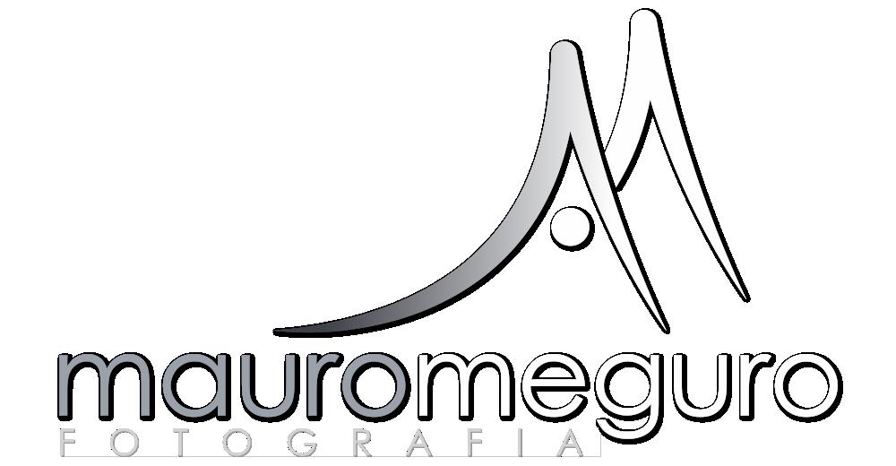 Mauro Meguro